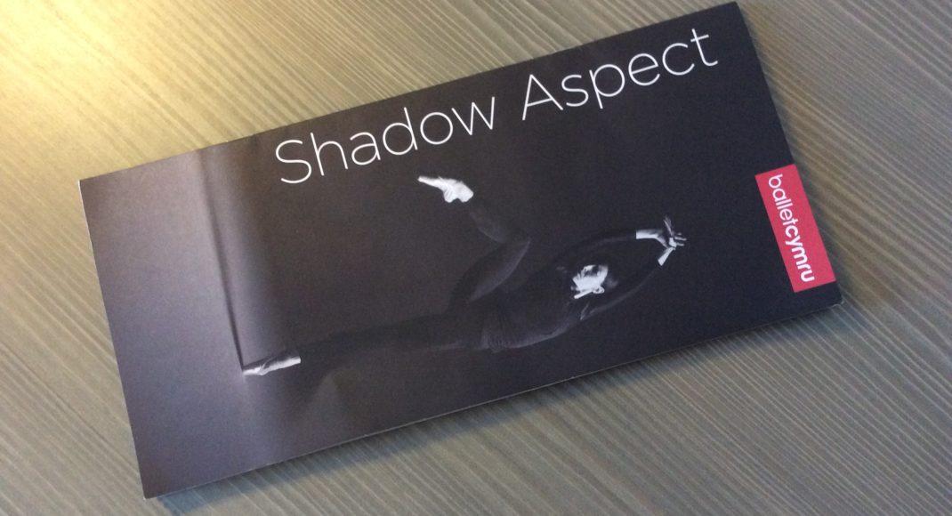 Shadow Aspect program